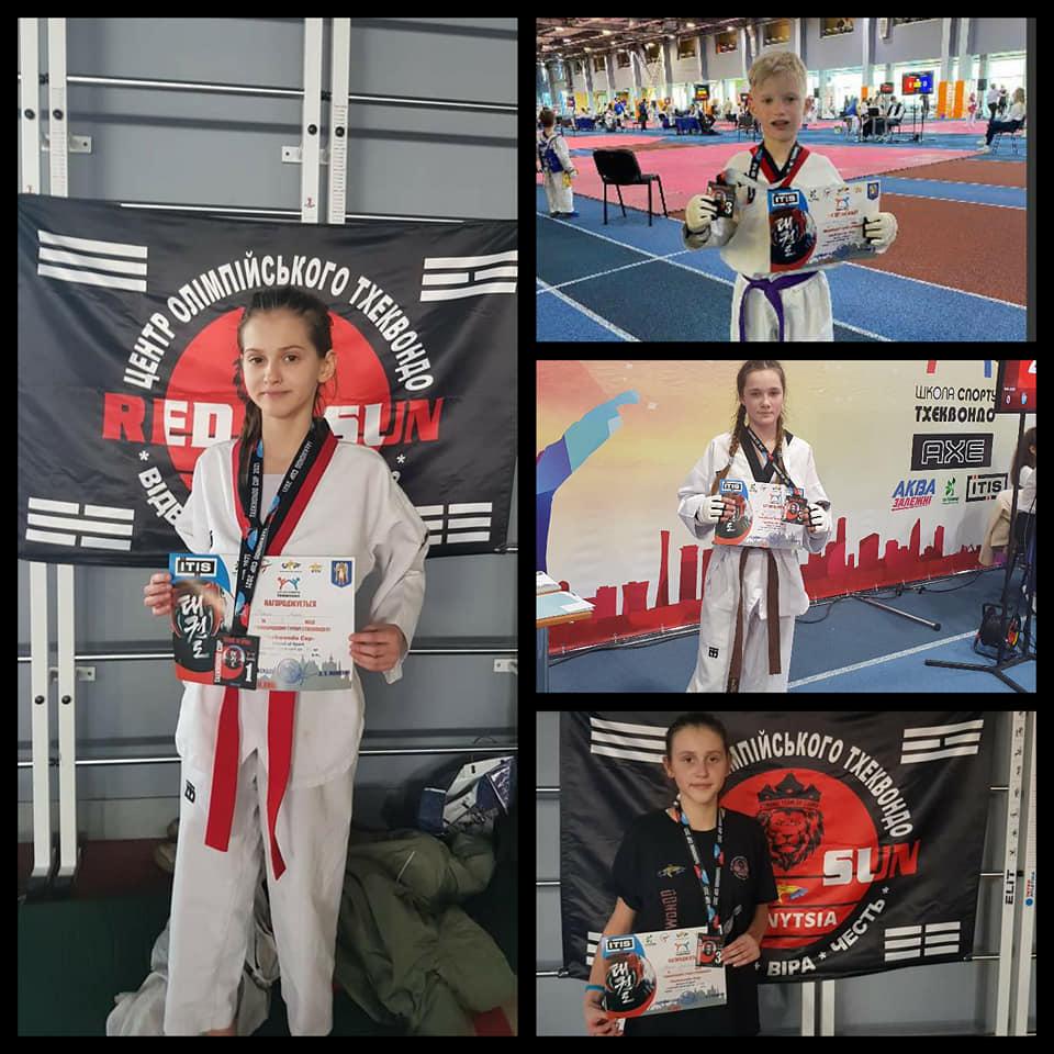 """Вінничани здобули чотири медалі Міжнародного турніру """"Taekwondo Cup"""""""
